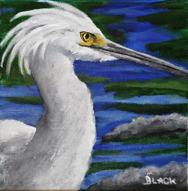 New Painting - Snowy Egret